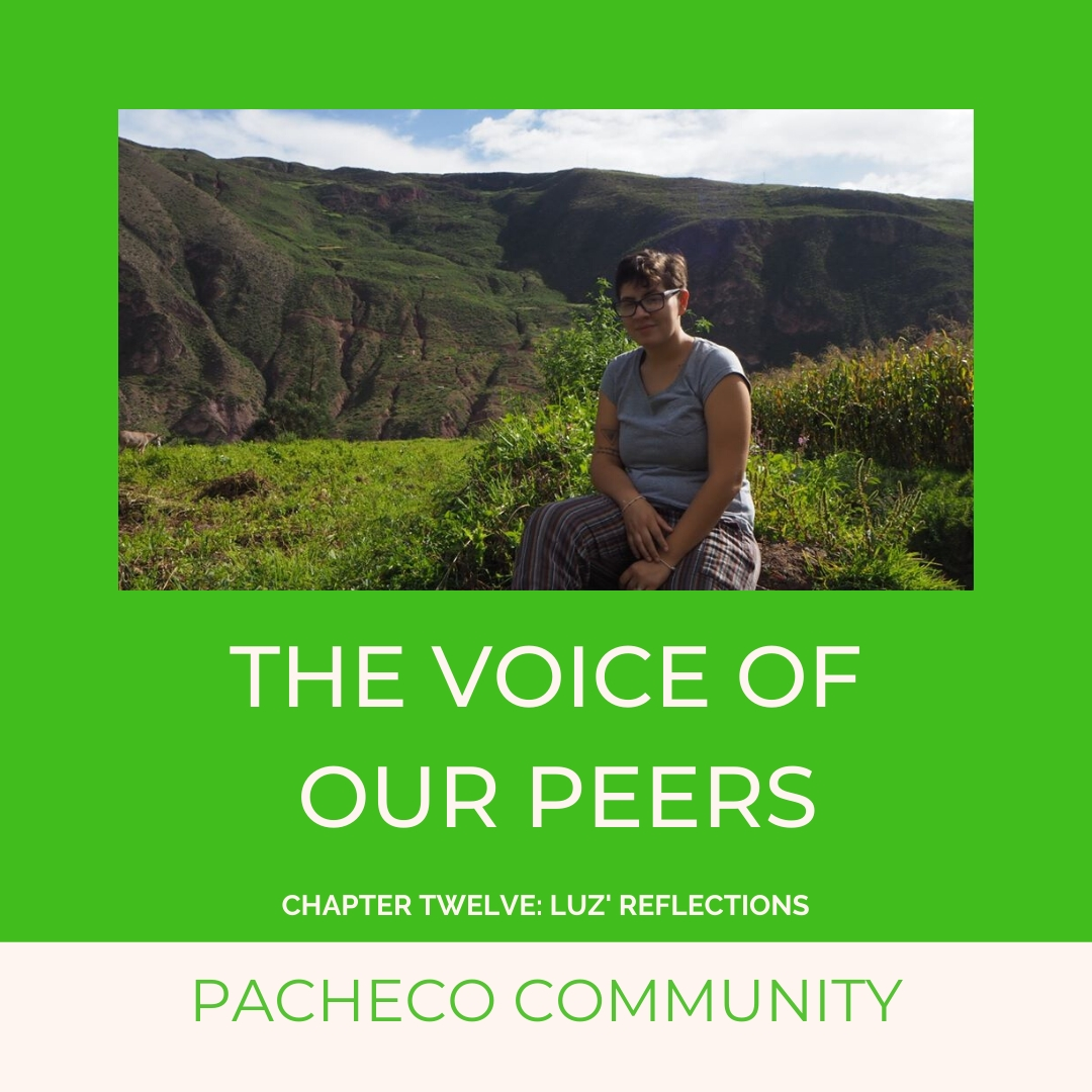 THE VOICE OF OUR PEERS: CHAPTER TWELVE