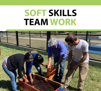 Soft Skills Certificate Team Work
